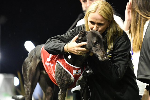 Seona Thompson with Aston Dee Bee following his Melbourne Cup victory