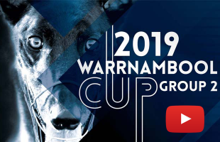 2019 Macey's Bistro Warrnambool Cup Preview