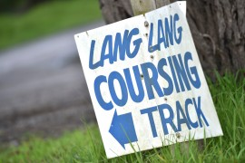 Coursing heads to Lang Lang
