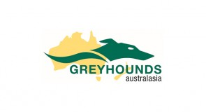 Greyhounds Australasia: Passport Policy Update