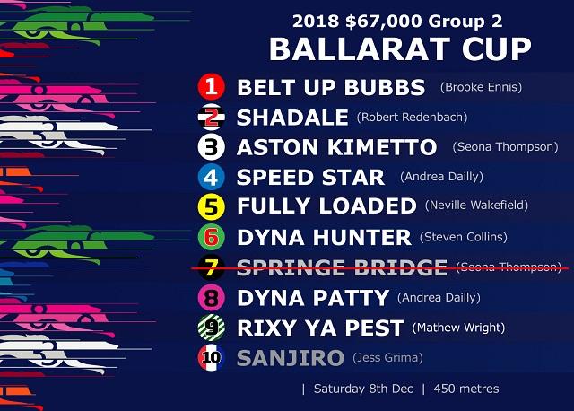 2018 Ballarat  Cup