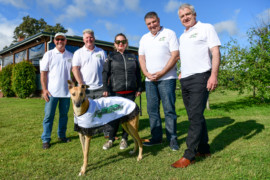 Australia's best greyhounds to take on local superstars in 'Gippsland Festival of Racing'