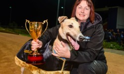 Weblec's a 'jet' in Geelong Gold Cup